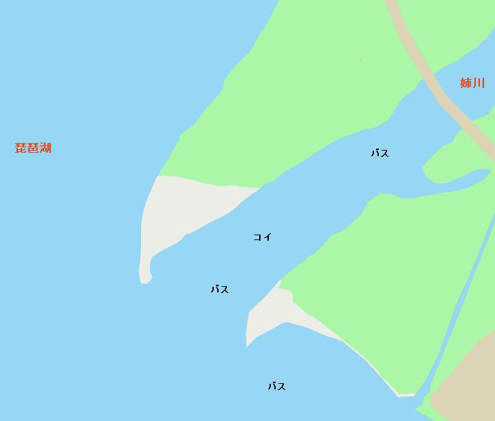 琵琶湖姉川河口のポイント
