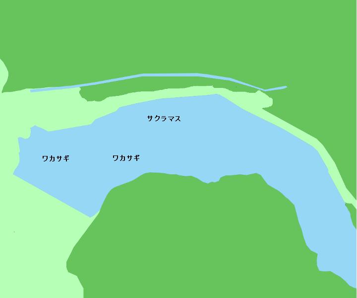 桜岡湖ポイント図