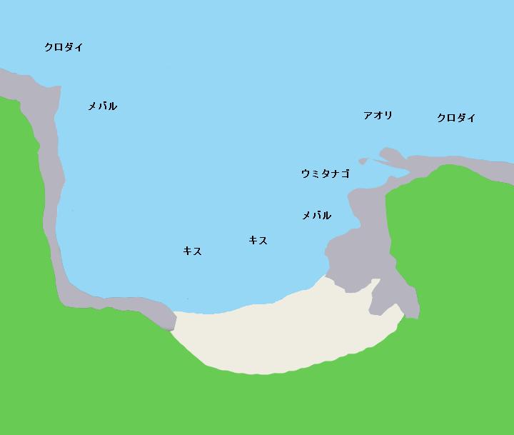 胴網海岸ポイント図