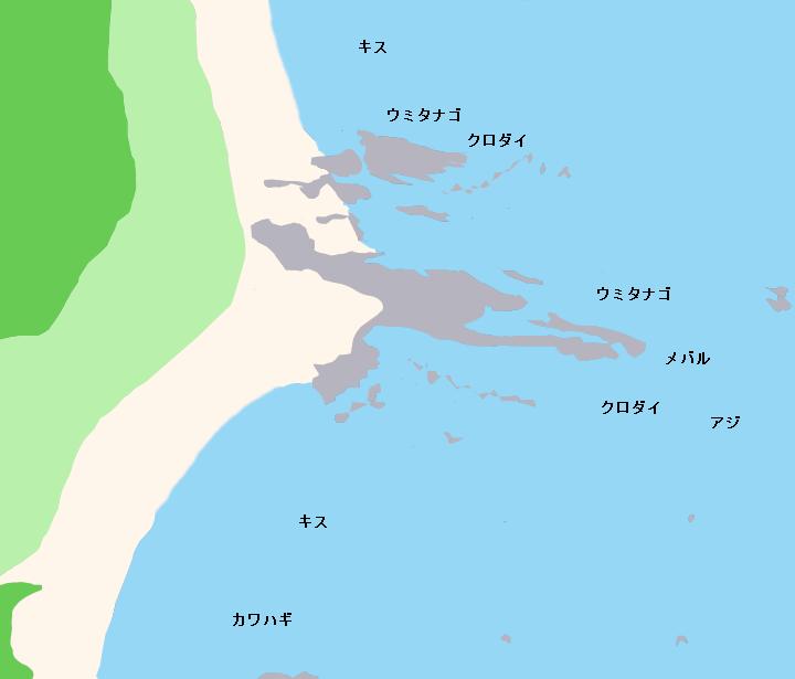 遠津浜海岸・長手鼻ポイント図