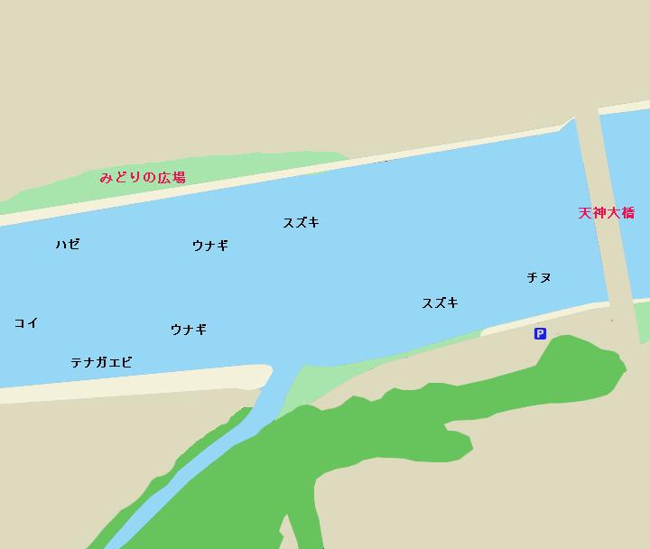 鏡川天神大橋周辺のポイント