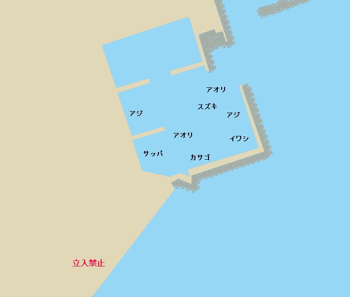 高知新港のポイント