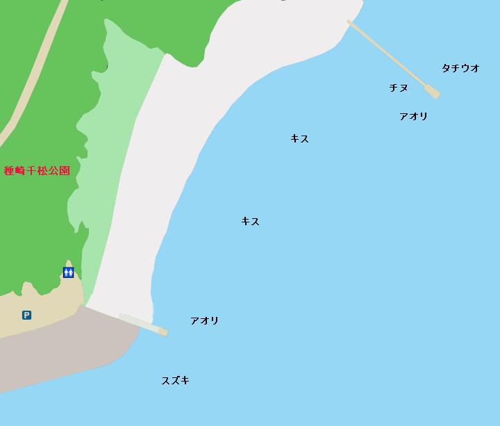 種崎千松公園周辺のポイント