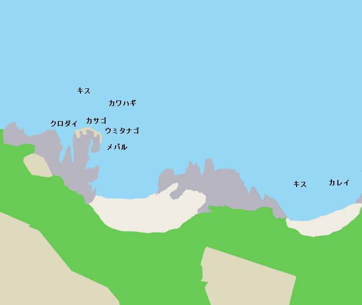 横堀海岸ポイント図