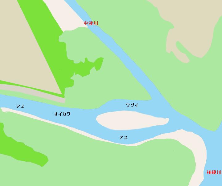 小鮎川 中津川・相模川合流地点付近