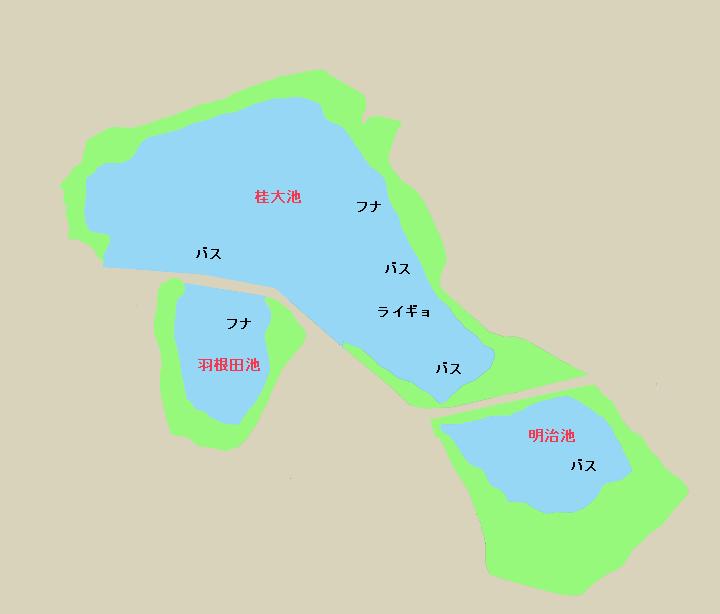 東楽園の池(桂大池・明治池・羽根田池)ポイント図