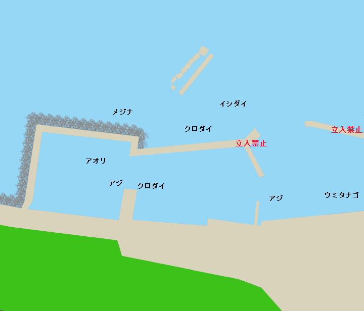 大沢港ポイント図
