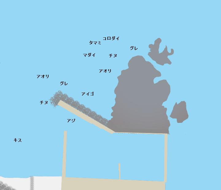 一本松漁港ポイント図