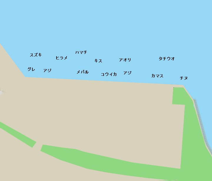 釣果 和歌山 タチウオ