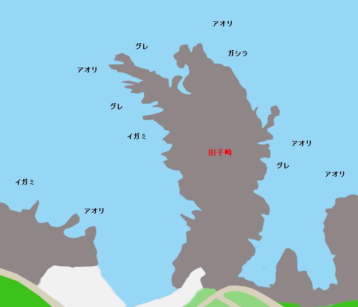 田子崎ポイント図