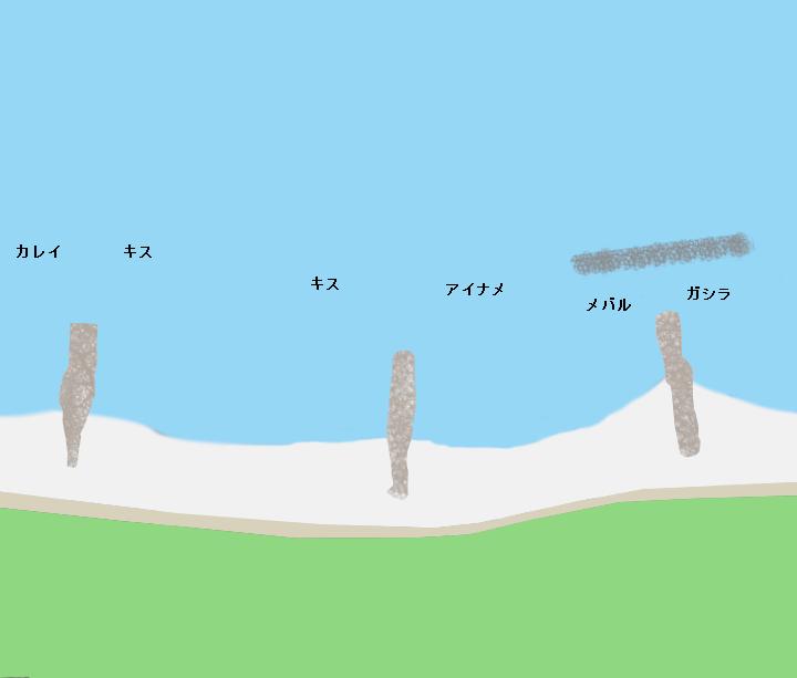 中八木海岸ポイント図