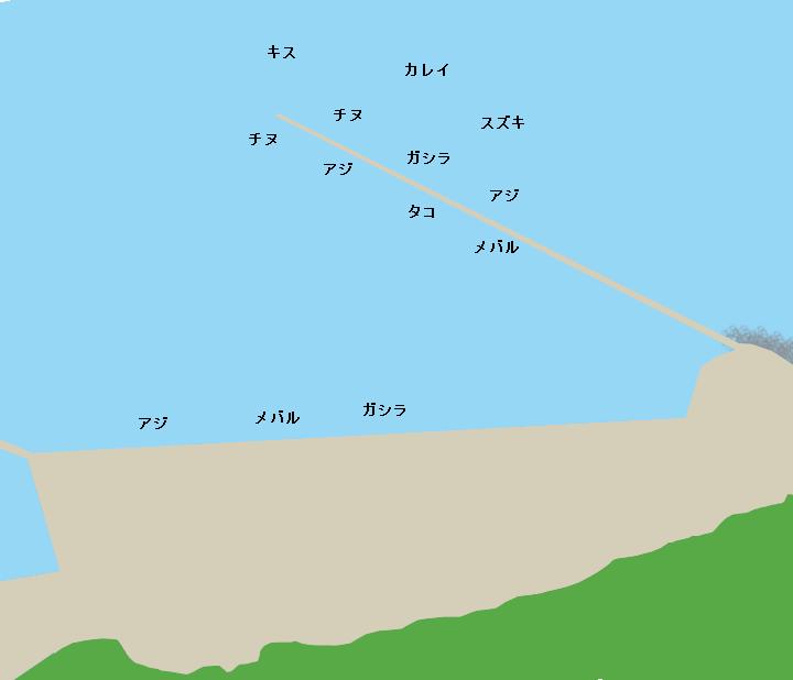 坪根漁港ポイント図