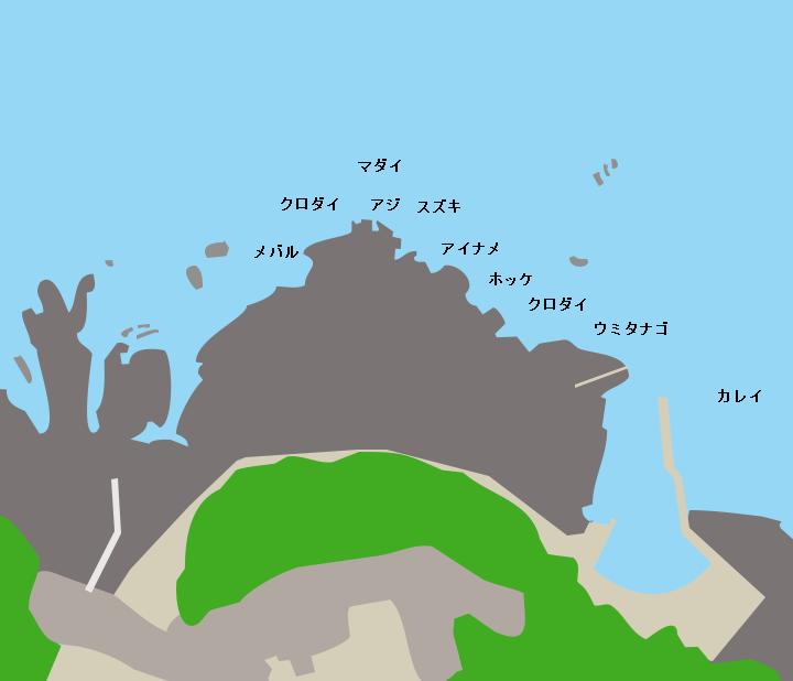 黄金崎ポイント図