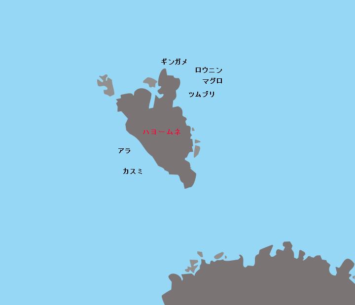 悪石島ハヨームネポイント図